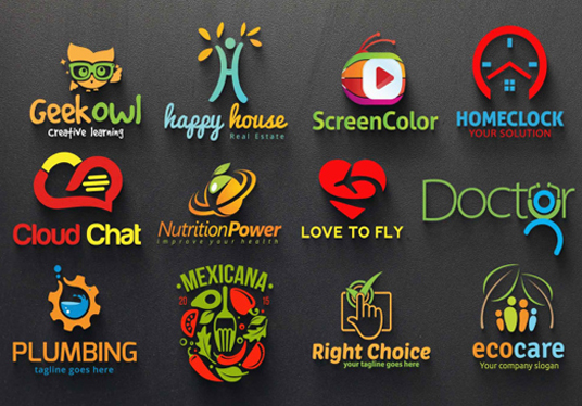 design 2 PROFESSIONAL logo for you in 24 hour