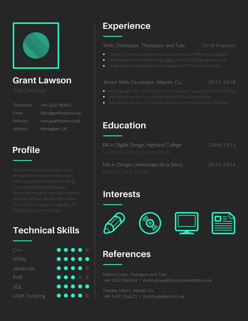 create a bold  stylish  professional and unique visual cv