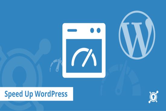 Speed up your WordPress speed with Google PageSpeed for $5 -