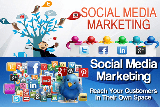 do Professional SOCIAL MEDIA Marketing and Promotion