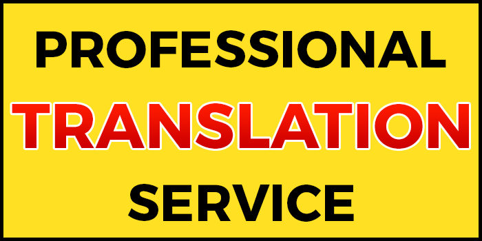 Article Translation HINDI to/from ENGLISH.