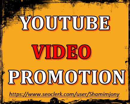 YouTube Video Marketing and Social Media Basic Promotion