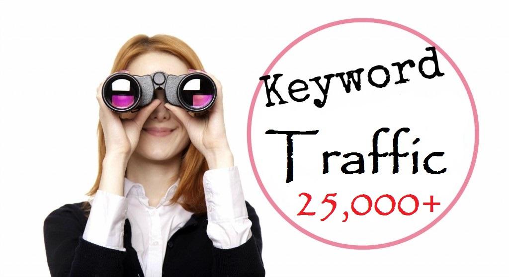 25,000+ Keyword Driven traffic