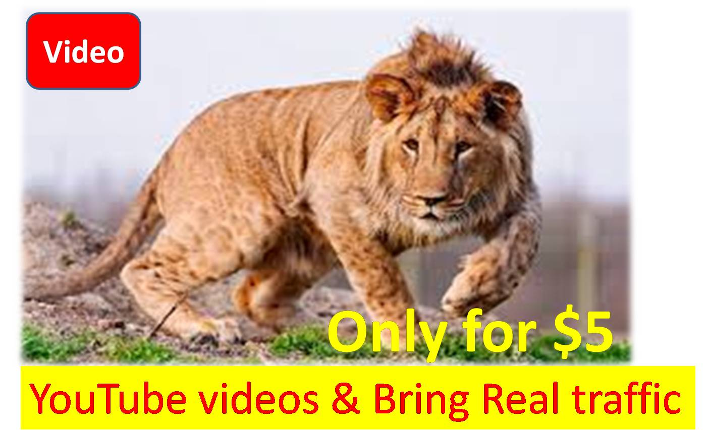 Promote your  YouTube videos and Bring Real traffic