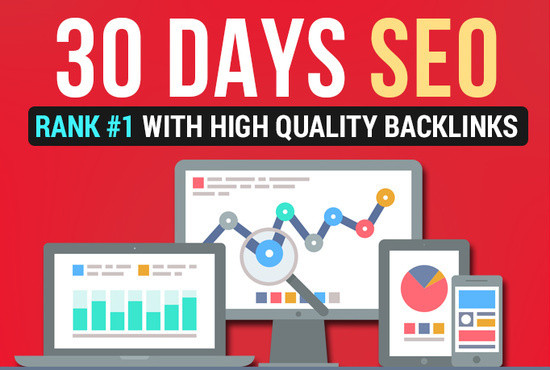 Sky rank your Website in 30 day