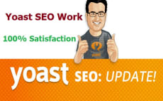 i will provide seo any website at cheap price