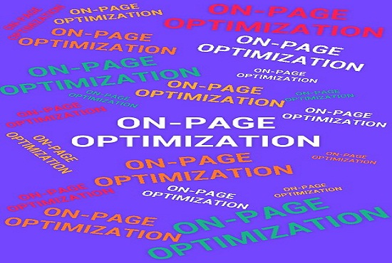 High-quality On-Page SEO including all features