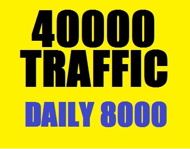 40000 Web Traffic Worldwide in 5 Days