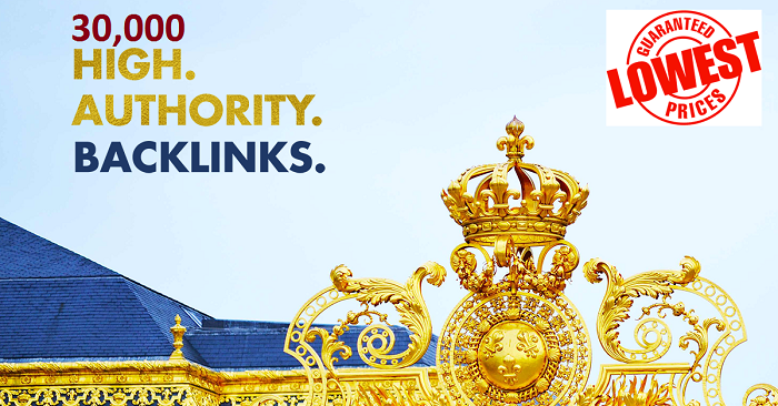 30,000 Authority Backlinks -Cheapest Price!