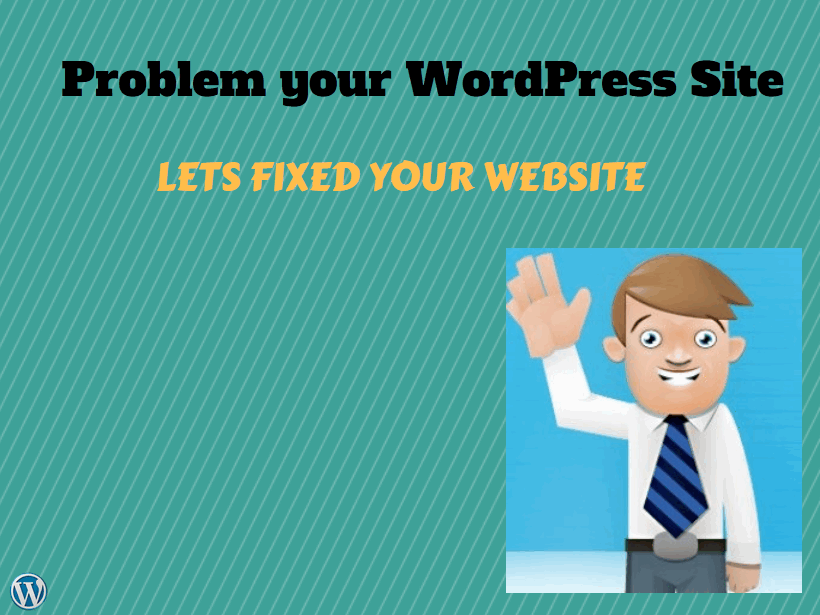 fixed wordpress problem within 24 hours