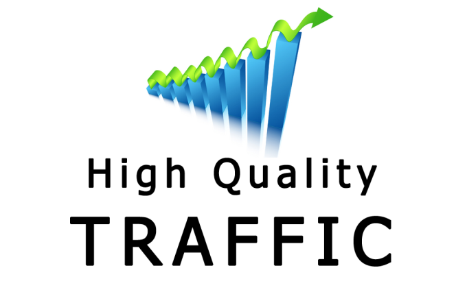 Daily 30000+ Web Site real Traffic