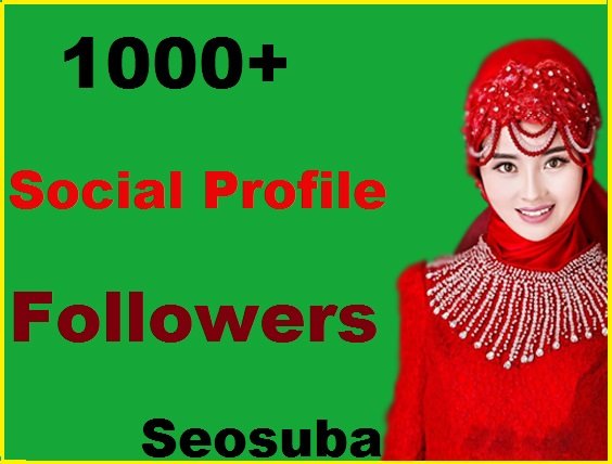 Add 1000+high quality social profile followers within 24 hours completed