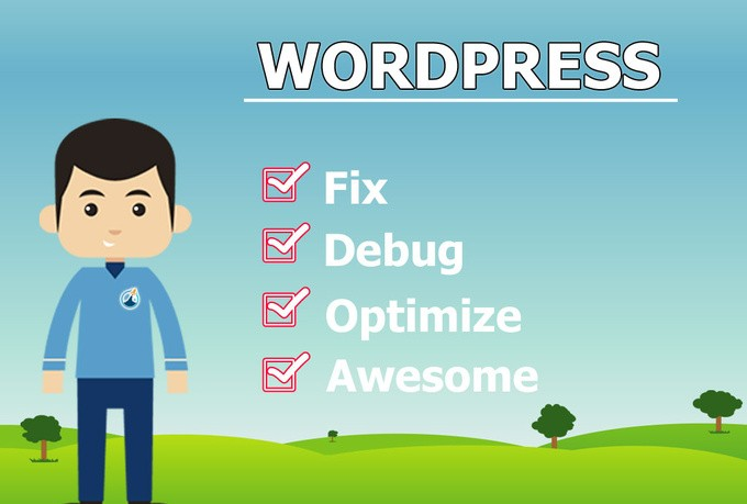 do any kind of WordPress Issues in only 5 hours