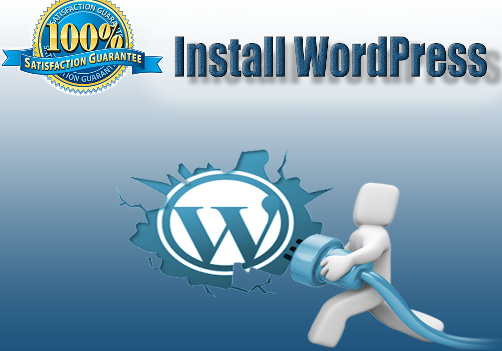 Install WordPress on your server with theme and plugin in 24 hours