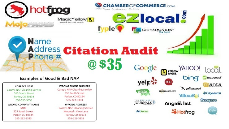 Citation Audit and Cleanup