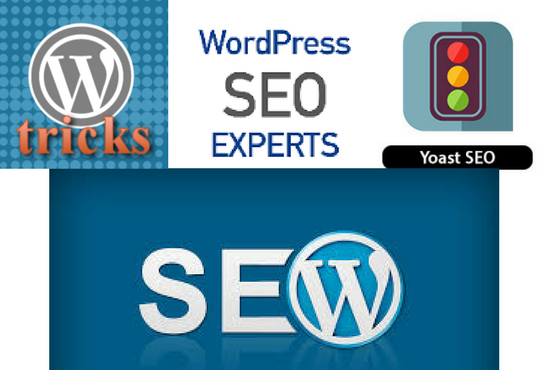 Do wordpress search engine optimization and on page SEO within 24 hours