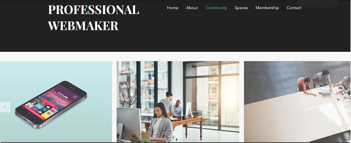 professional website maker in High quality