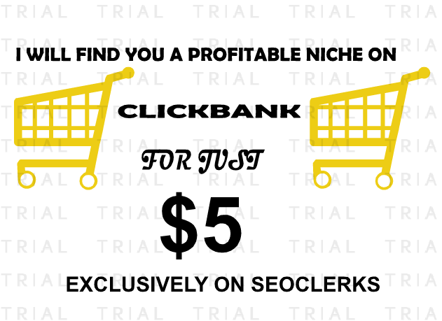 Find you a highly PROFITABLE niche on clickbank