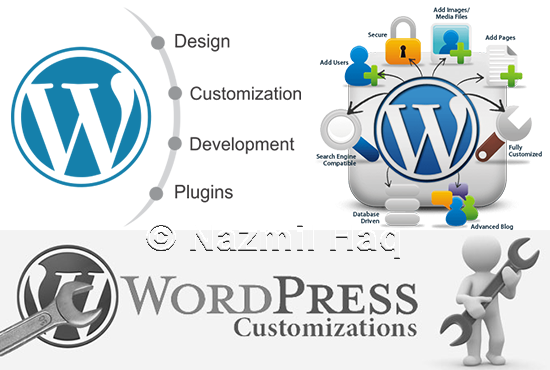 Customize wordpress theme,  website Large