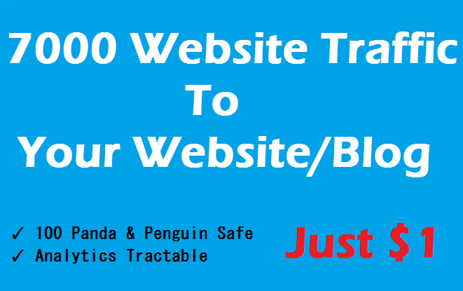 Get 10000 Real & Safe Targeted Human Traffic To Your Website or Blog