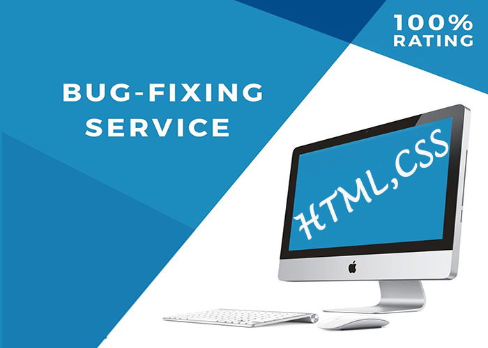 Fixing any kind of Bug or Error in HTML, CSS