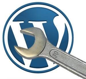 Wordpress Theme Audit