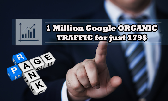 30,000+ Google ORGANIC Search Engine Traffic