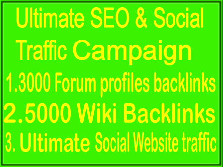 Update SEO & Social Campaigns- 3000 From profile Backlink- 5000 Wiki Backlink -Unlimited Social web traffic