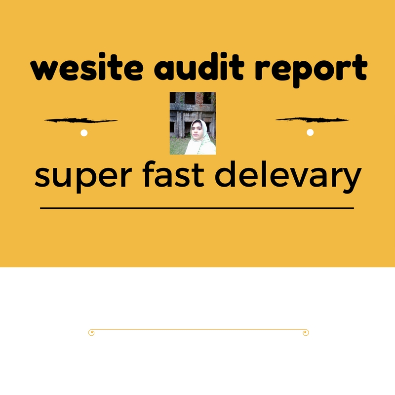 website Audit Report  with super fast delevery