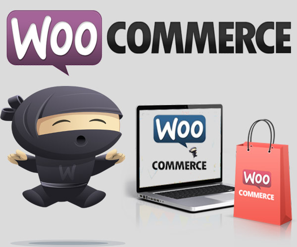 Design responsive SEO friendly Woocommerce website