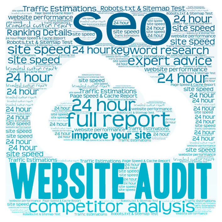 CUSTOM BRANDED SEO WEBSITE AUDITOR+COMPETITOR ANALYSIS+KEYWORD RESEARCH