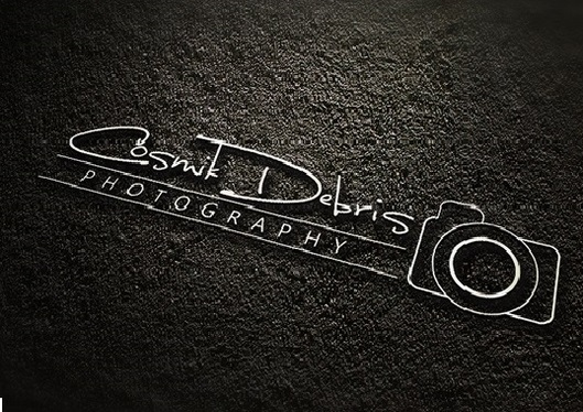 Design outstanding signature logo with unlimited revision