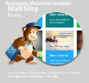 Plan Responsive Mailchimp Template