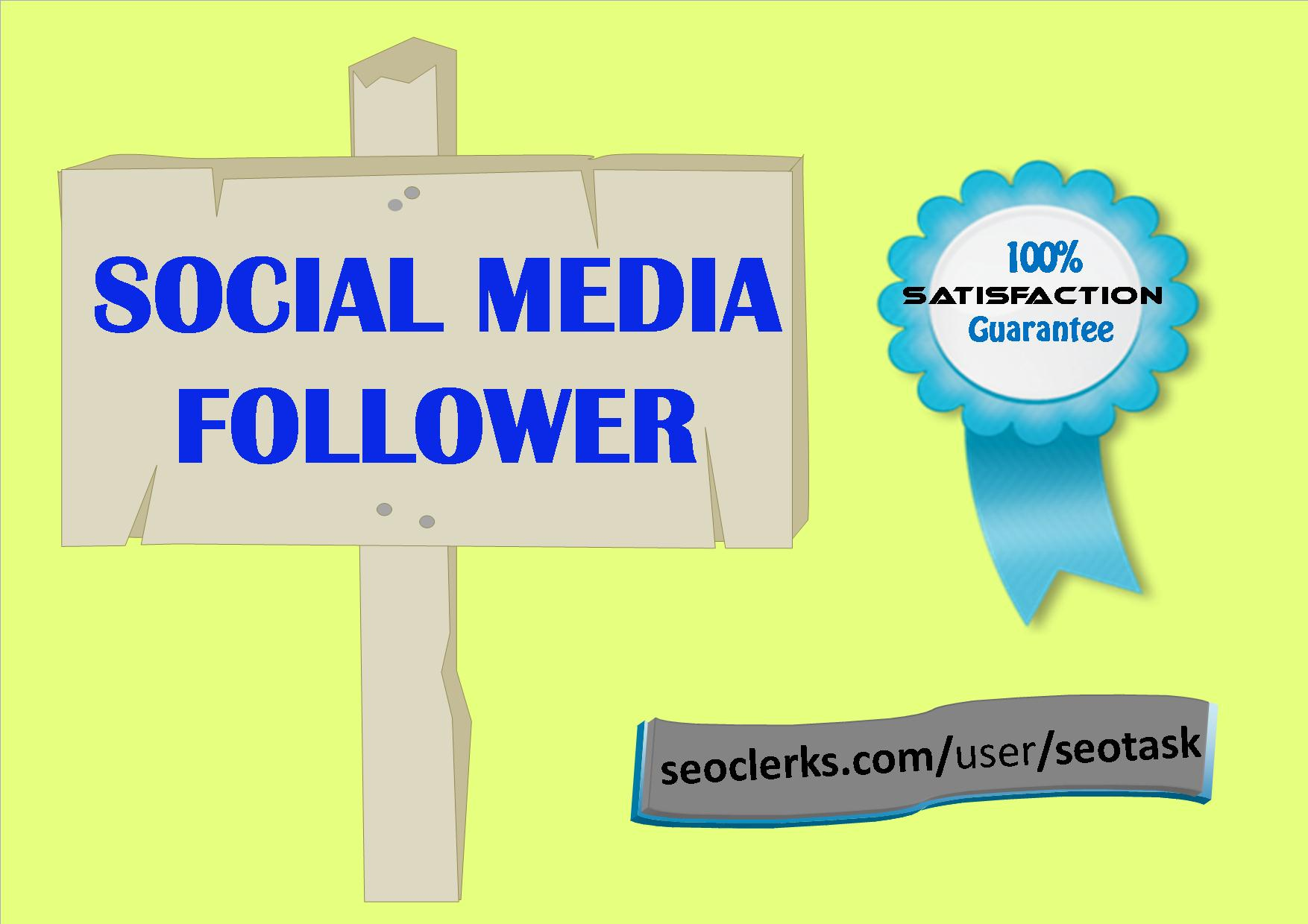 Instant 1000+ Super quality Followers  Service