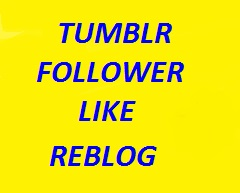 120 Tumblr followers or likes or reblogs in cheap rate