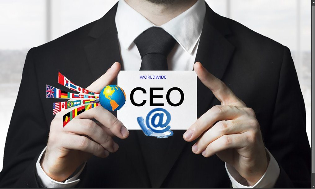 Provide USA Companies CEO & CFO contact details