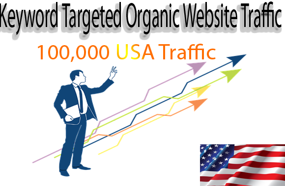 Get Panda & Penguin safe keyword targeted 100,000 USA organic traffic