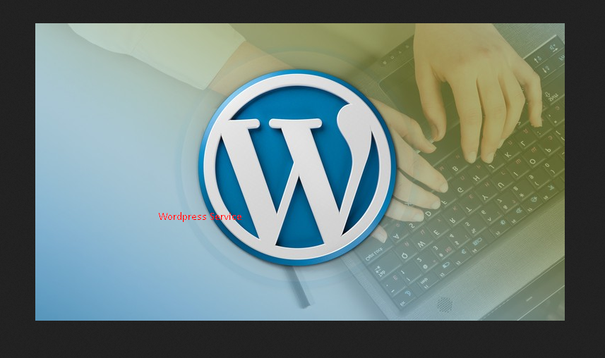 I'll solve your wordpress error