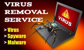 Will Check And Clean Your Pc From any Viruses Or Rats