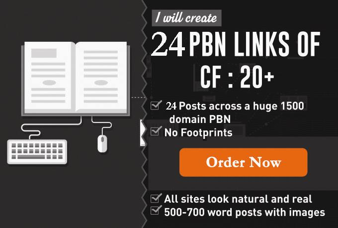 24 Strong Homepage High Quality PBN Backlinks
