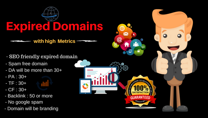 SEO Friendly Expired Domain With High Metrics