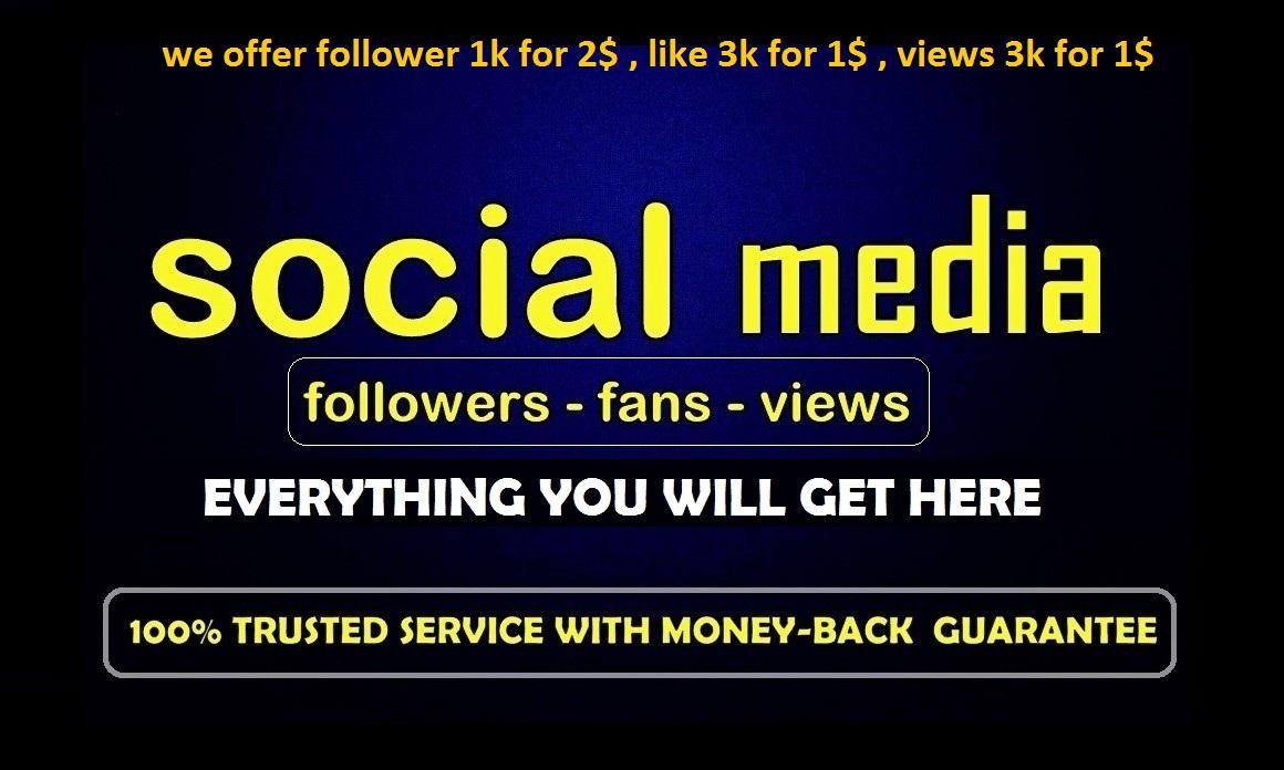 Instant social media  Custom  service
