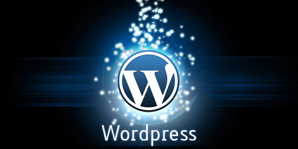 help You in Wordpress customization, themes, plugins