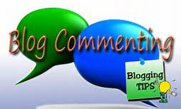 Provide 45 Niche Related Blog Comment  .