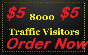 drive 8000+ low bouce rate human traffic for 1 month ...