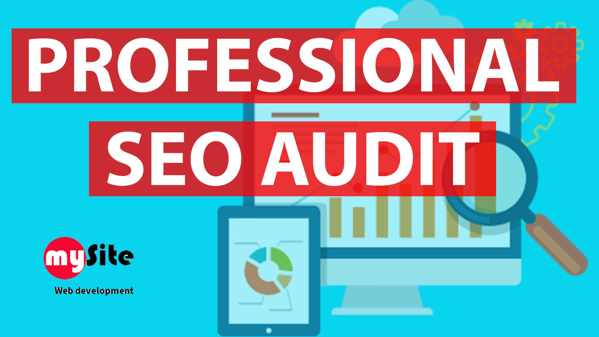 Professional SEO & DOMAIN STRENGHT audit