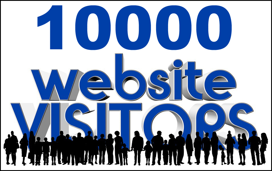 10000 Social and Organic Search traffic to your website