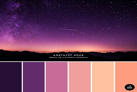New Arrival I will Create a Custom Color Palette for Your Logo/Product/Website
