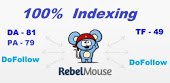 Provide You Guest Post On Rebelmouse With DF link
