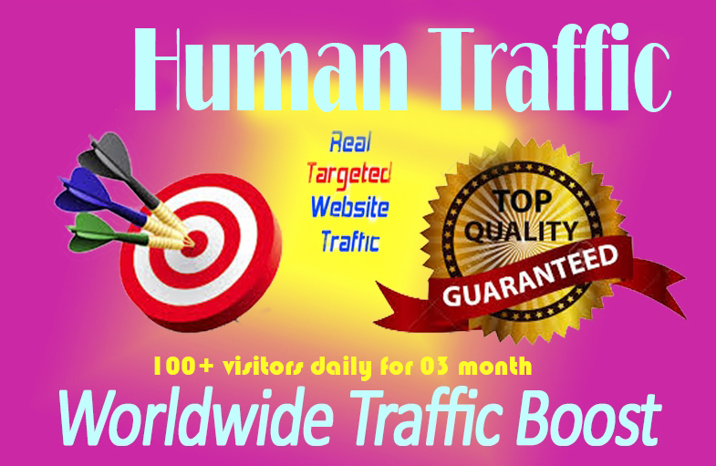100+ TARGETED Human Traffic Daily to your Website/Blog for 03 Months